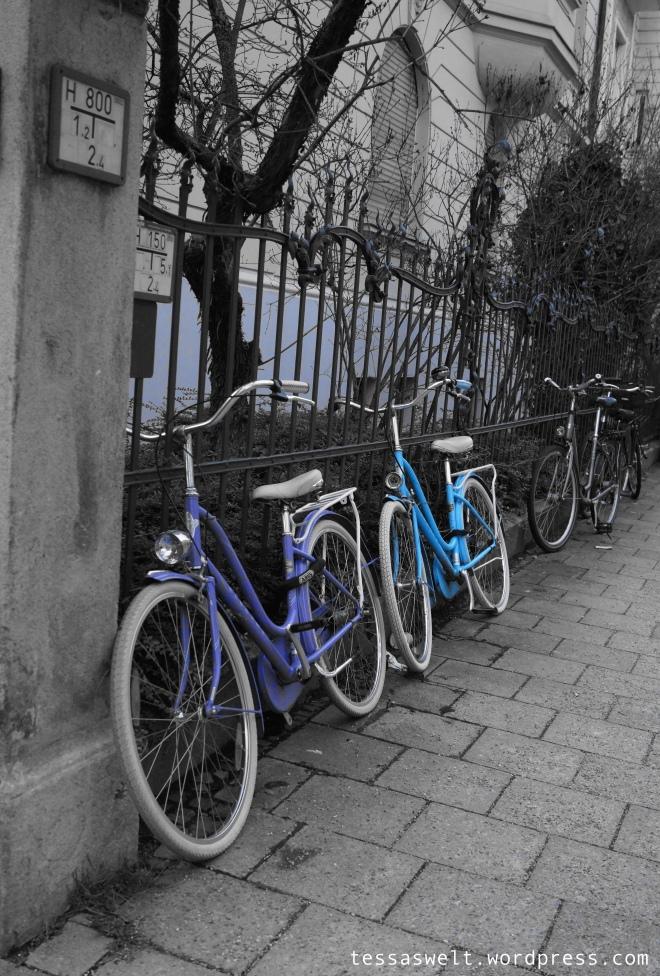 Fahrräderblau1